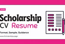 Outstanding Scholarship Resume (CV) Sample for Applicants