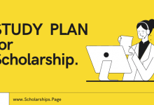 Write a STUDY PLAN to Land a Scholarship at Top Ranked University of College
