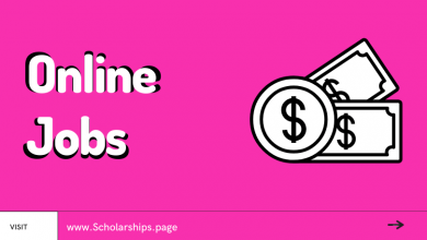 Top 10 Highest Paying Online Jobs for Students