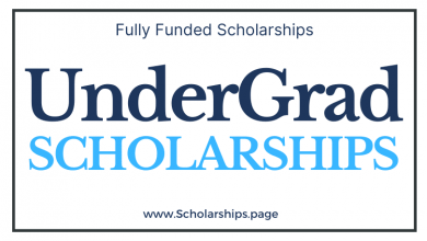 Undergrad (Bachelor) Degree Scholarships 2022-2023 Submit Your Application