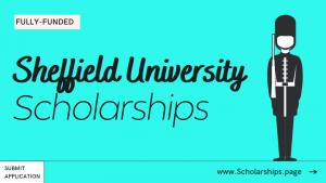 Sheffield University Scholarships Acceptance Rate of Sheffield University