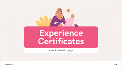 Experience Certificates Definition, Samples, Template, Format, and Significance